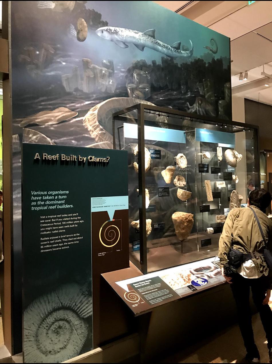 Smithsonian1