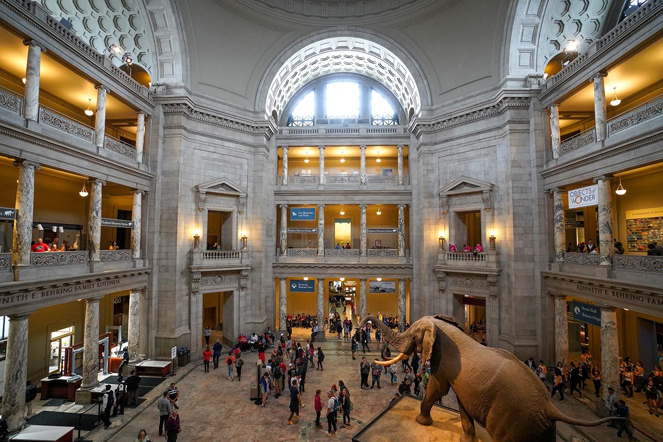 SmithsonianRotunda