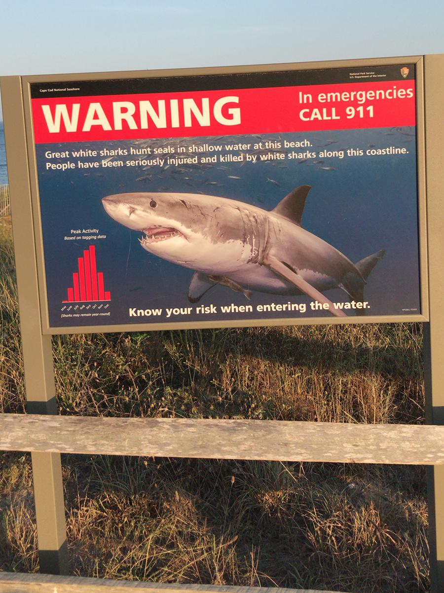 SharkWarning